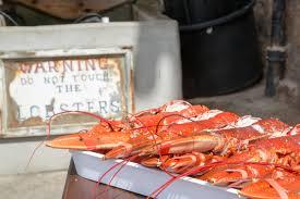 The Crail Lobster Hut