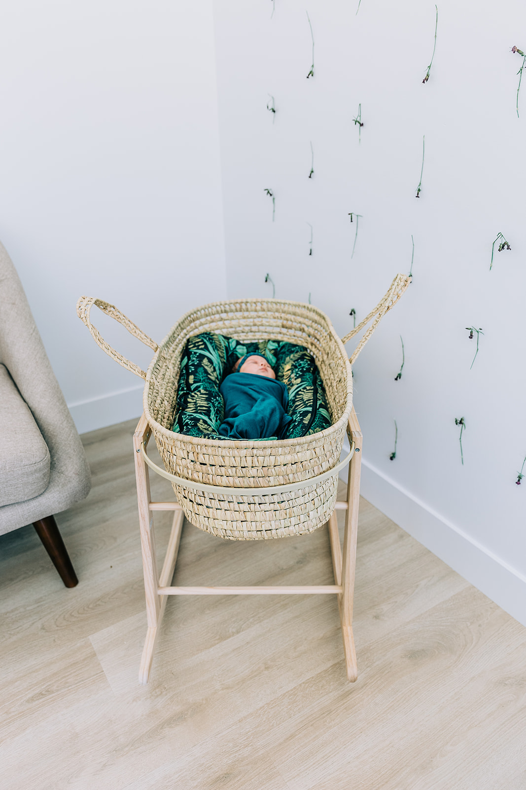 Darling newborn studio photo shoot for baby girl Leighton in a bassinet in Logan, Utah by Bella Alder Photography in Blush Door Studio | #bellaalderphoto #newbornphotographer #utahnewbornphotos #babygirlnewborn #babygirl #blushdoorstudio #newbornsession #utahbabies