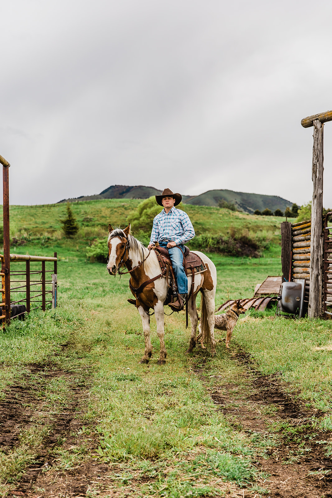 senior pictures on a horse paradise utah cache valley cowboy senior photos with bella alder photography professional portrait photographer #bellaalderphoto #seniorpictures #cowboy #portraits #cachevalley #paradiseutah #loganutahphotographer #utahseniors #utahportraitphotographer #utahseniorphotos #seniorphotos #graduation