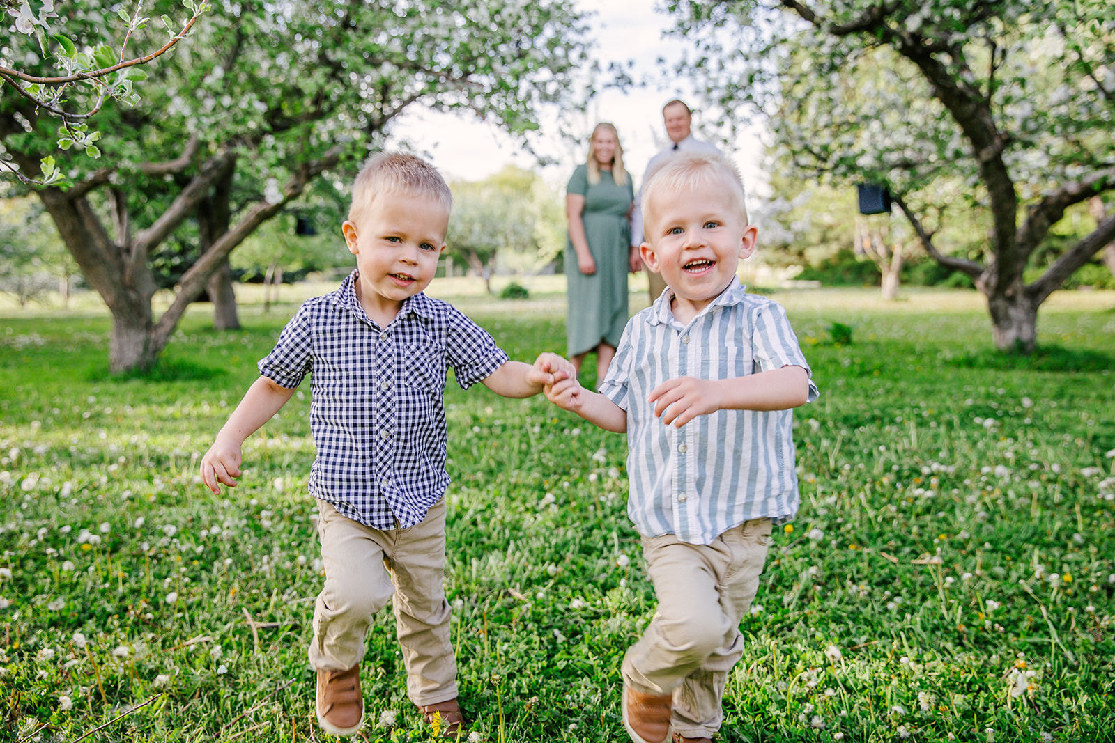 Happy boys in field of flowers. Summer time photos. Laughing boy sin green fields Family photos. Ranch style photography. Apple Orchard photography. Professional family photos. Twin parents. Trees blossoming. Tree blossoming photos. Twin boys run through a field of flowers. #twinboy #appleorchardphotography #summertimephotos #familyphtos #blossomphotos #lookingintoeachotherseyes #happyfamily #formalpictures #greenfieldphotos #hotsummernights #laughingboy #twinparents