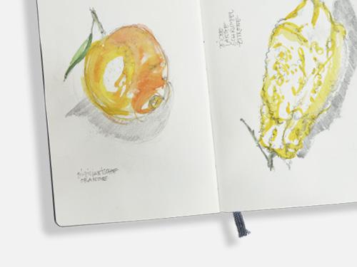 FREIE ARBEIT  Sketchbook