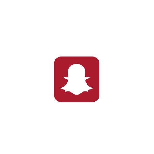 logos3_snap.jpg