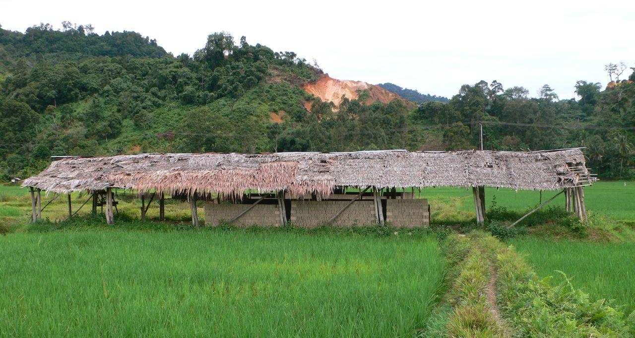 BC indo brick drying shed.jpg