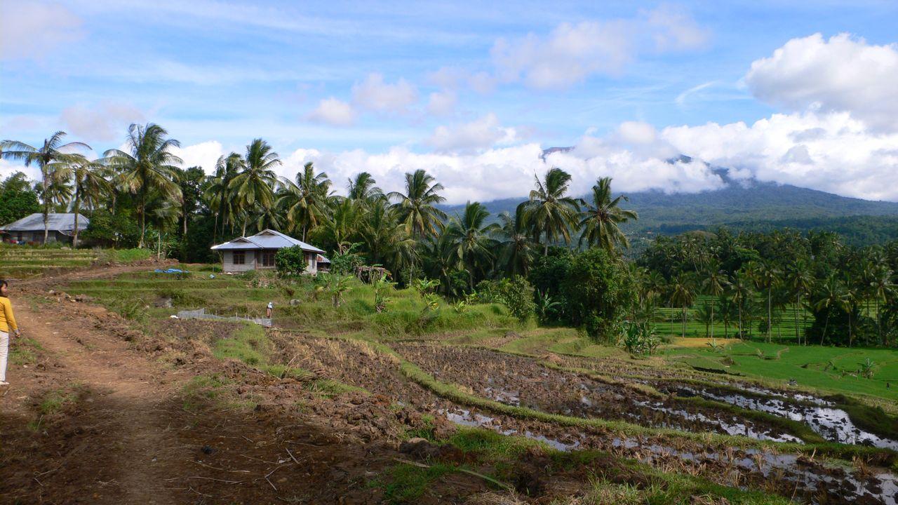 BC indo Gunung Rajo .jpg