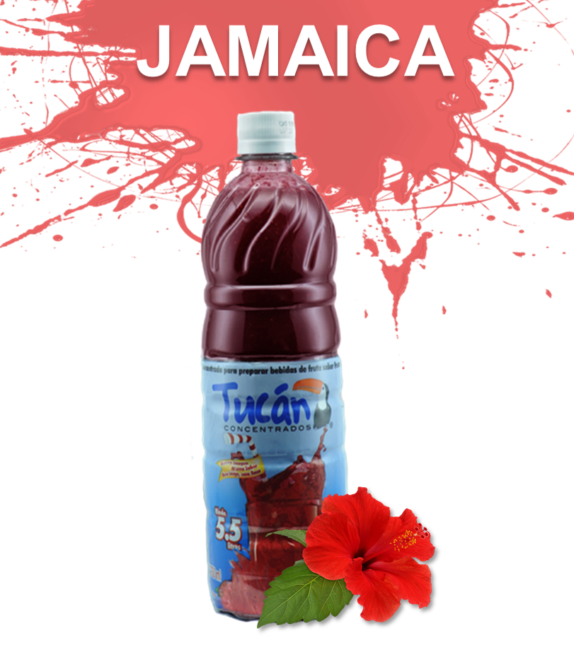 jamaica WS.png