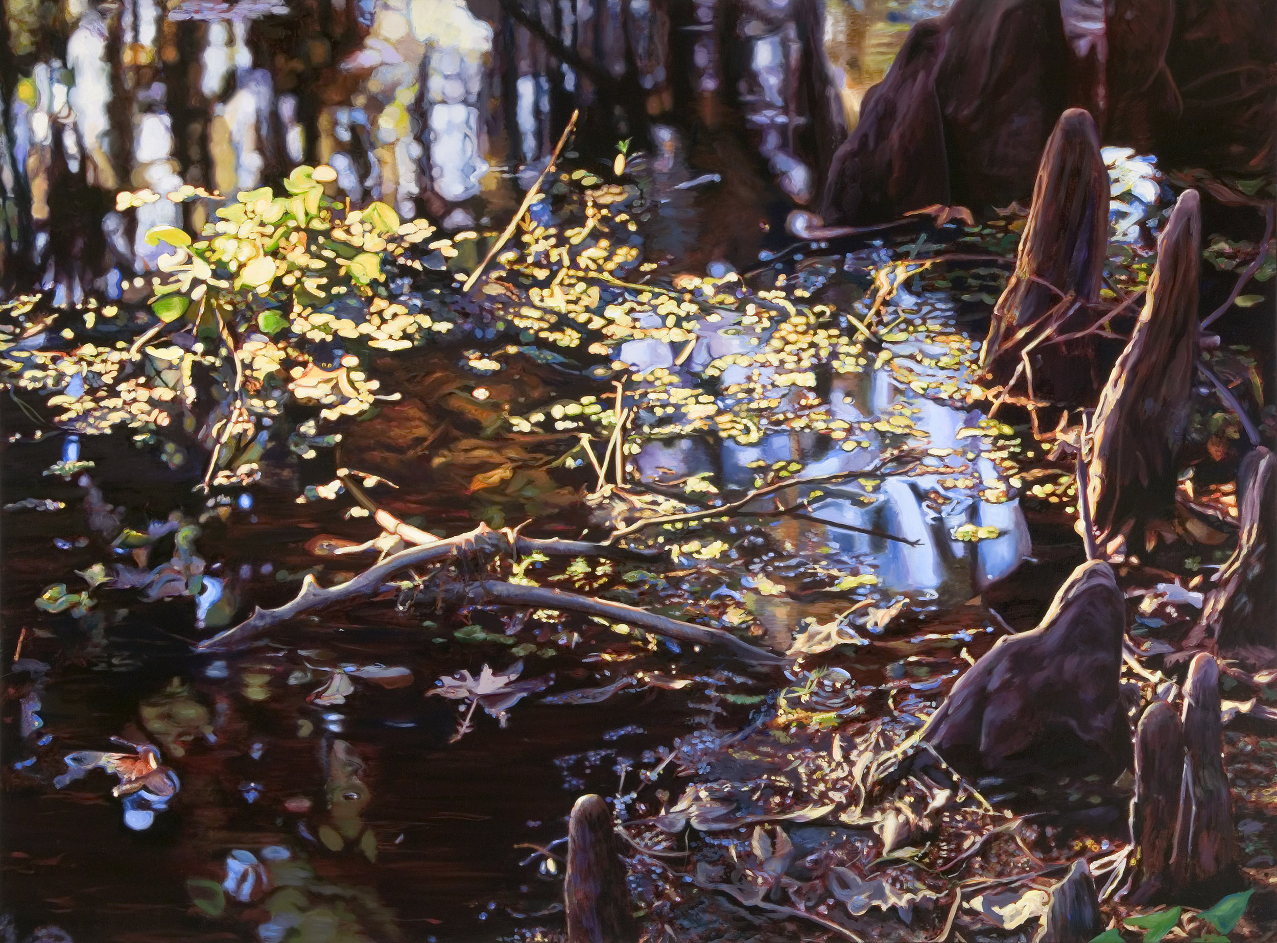 """Cypress Reflections , oil over acrylic, 40"""" x 54"""", 2004"""