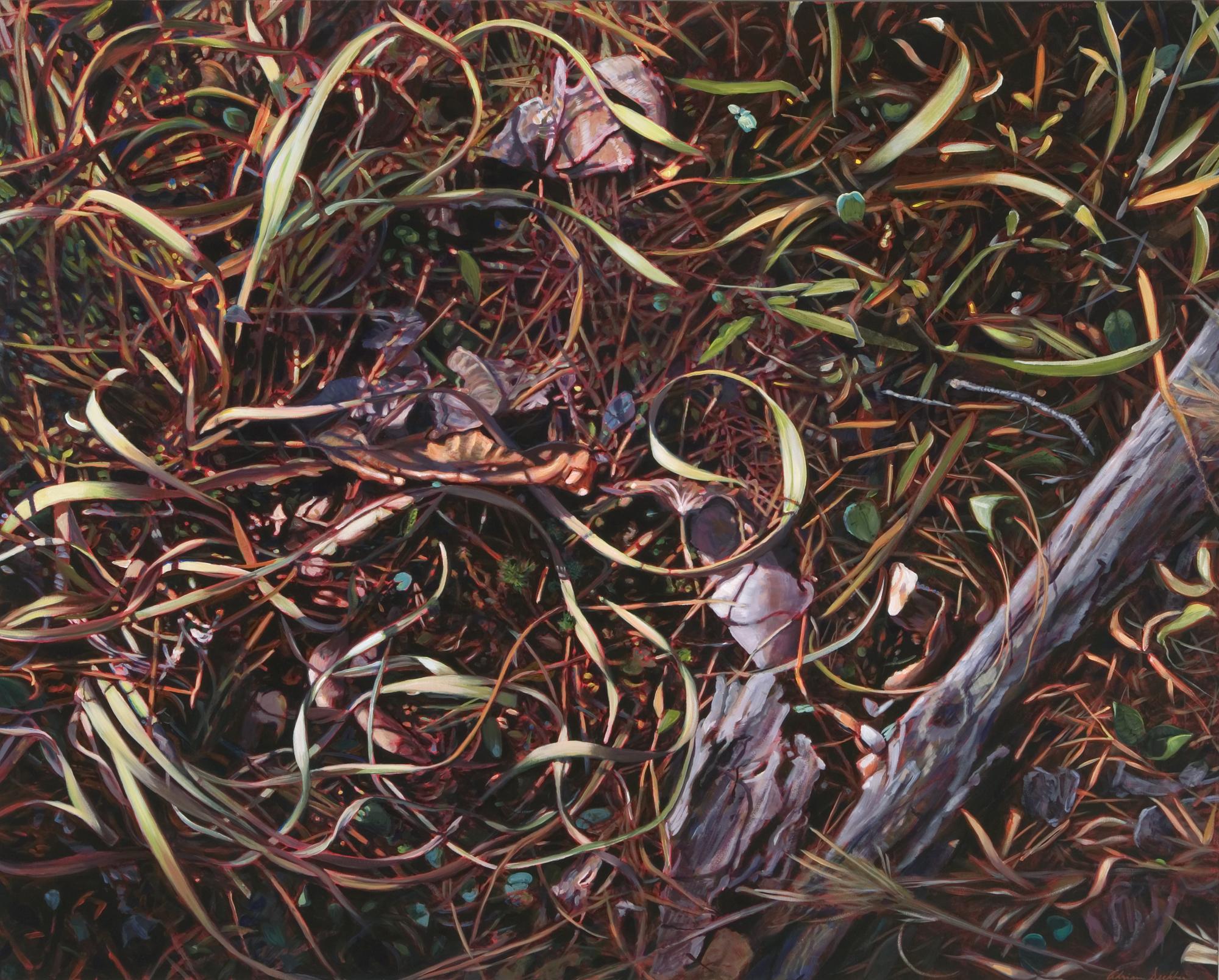"""Forest Floor , oil over acrylic, 48"""" x 60"""", 2007"""