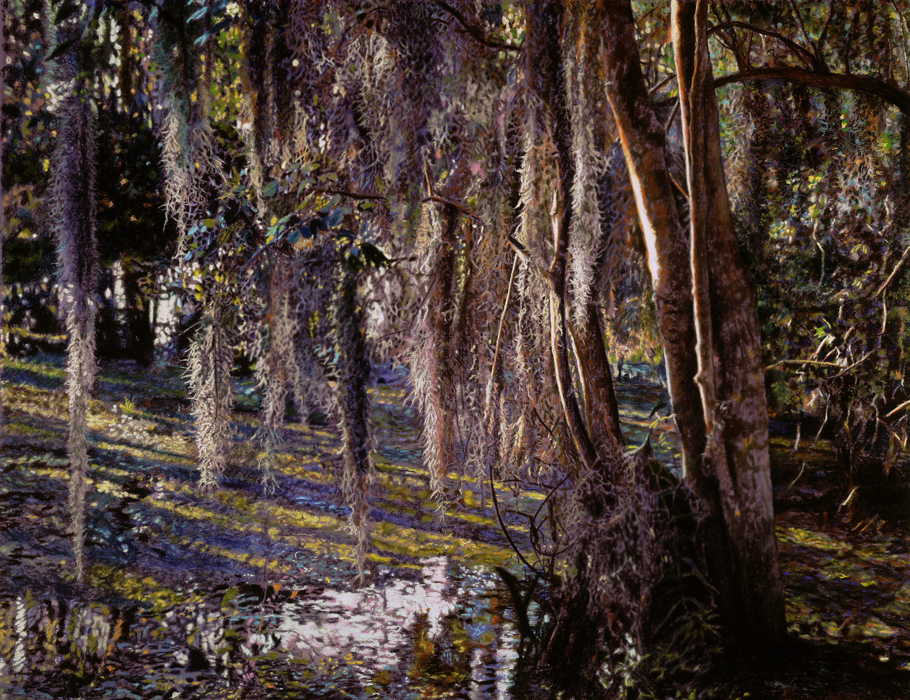 "Swamp Moss , limited edition print, 23"" x 33"", ed. 275, 2000"