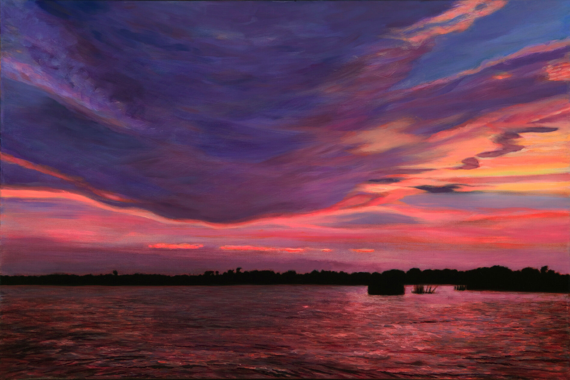 "Marsh Grass :  Sunset , pastel, 20"" .x 30"", 2008"
