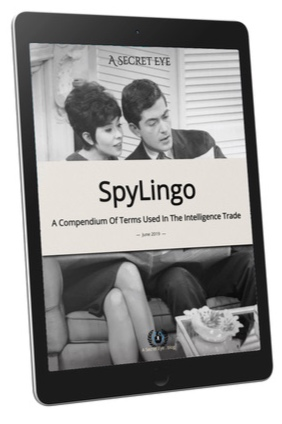 SpyLingo-Tablet-Cover.jpg
