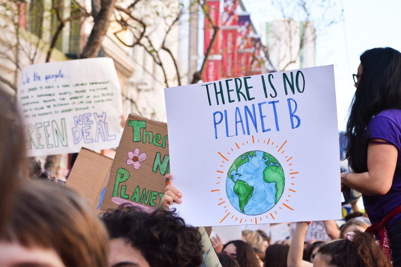Sydney officially declares climate emergency .jpg