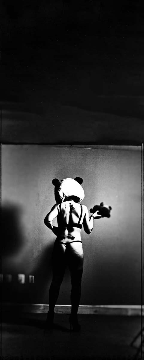 Timaree Panda Shoot 4.jpg
