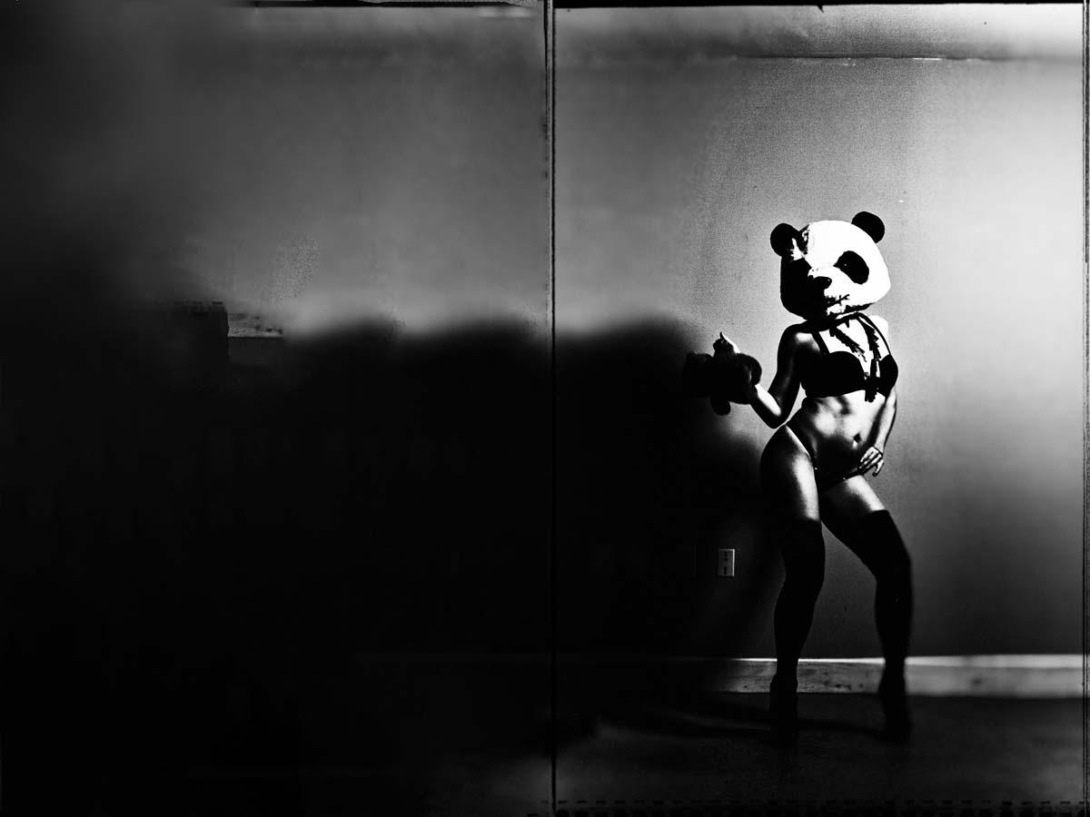 Timaree Panda Shoot 6.jpg