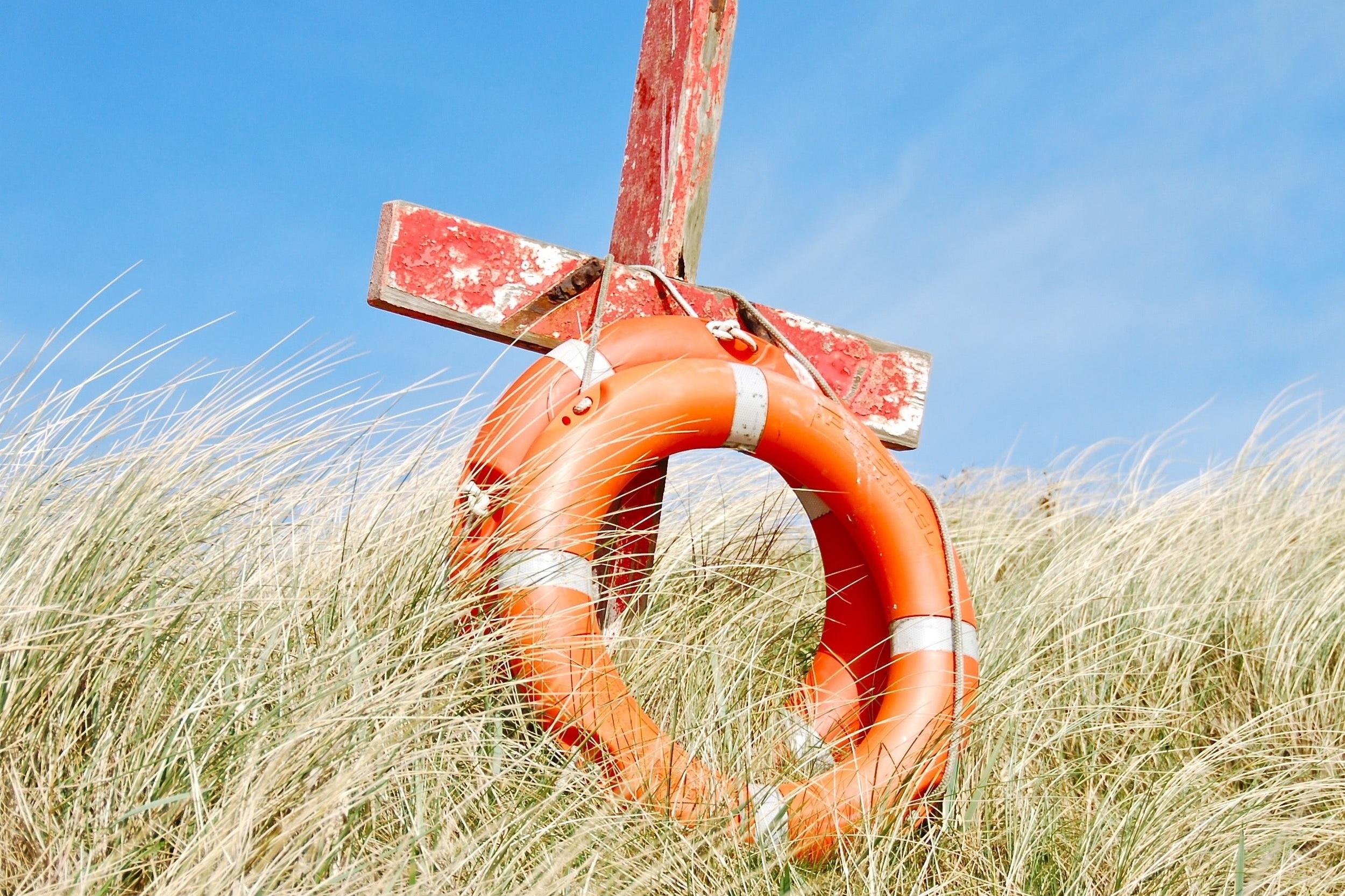 resources for survivors -