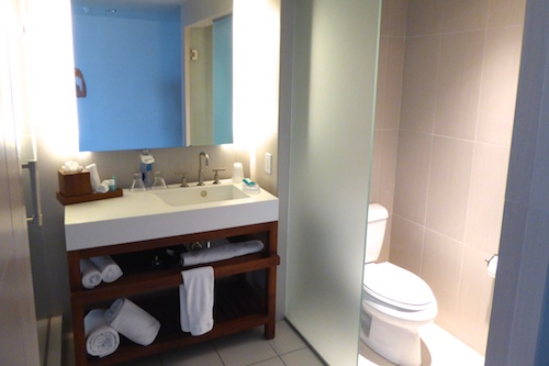 Frosted glass separates the toilet room from the rest of the bathroom