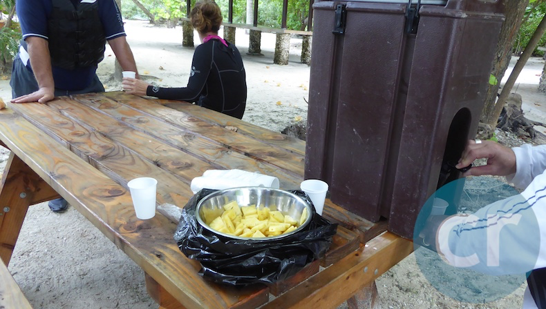 Tropical fruit snack on Catajet Tour in Moorea with m/s Paul Gauguin