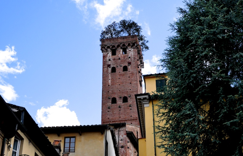 The Torre Guinigi