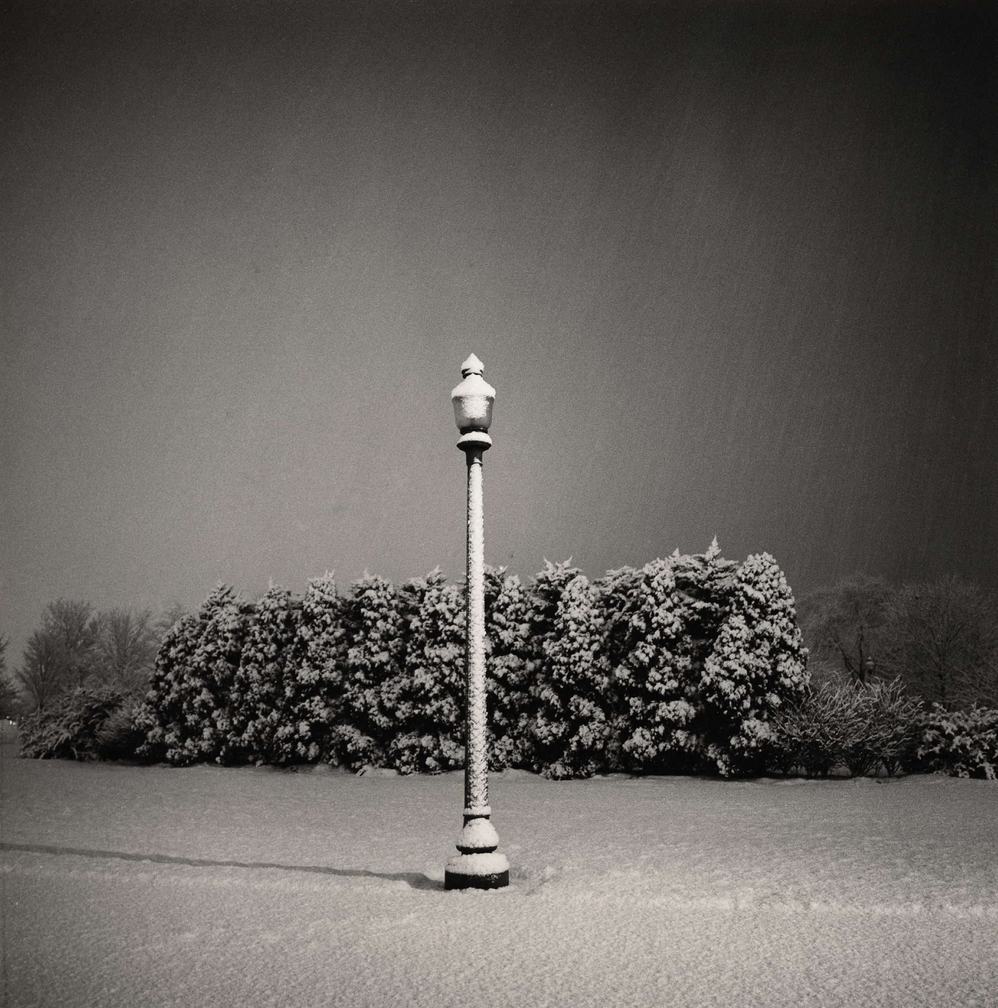 lamp_post_january_snow_1998.jpg