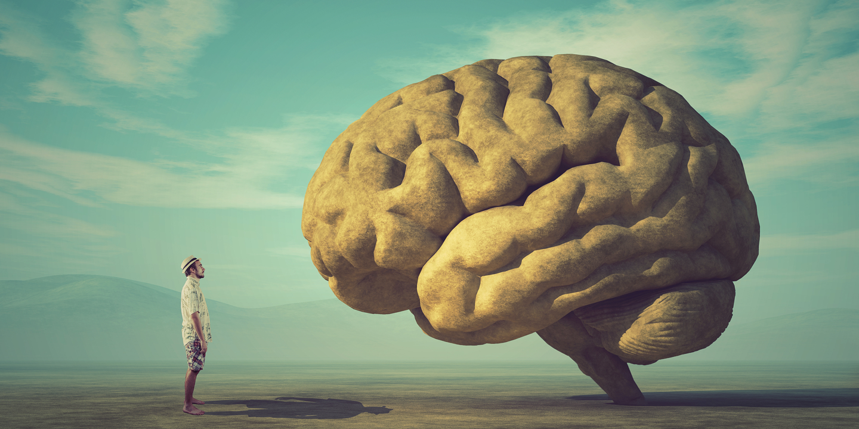 the mind….