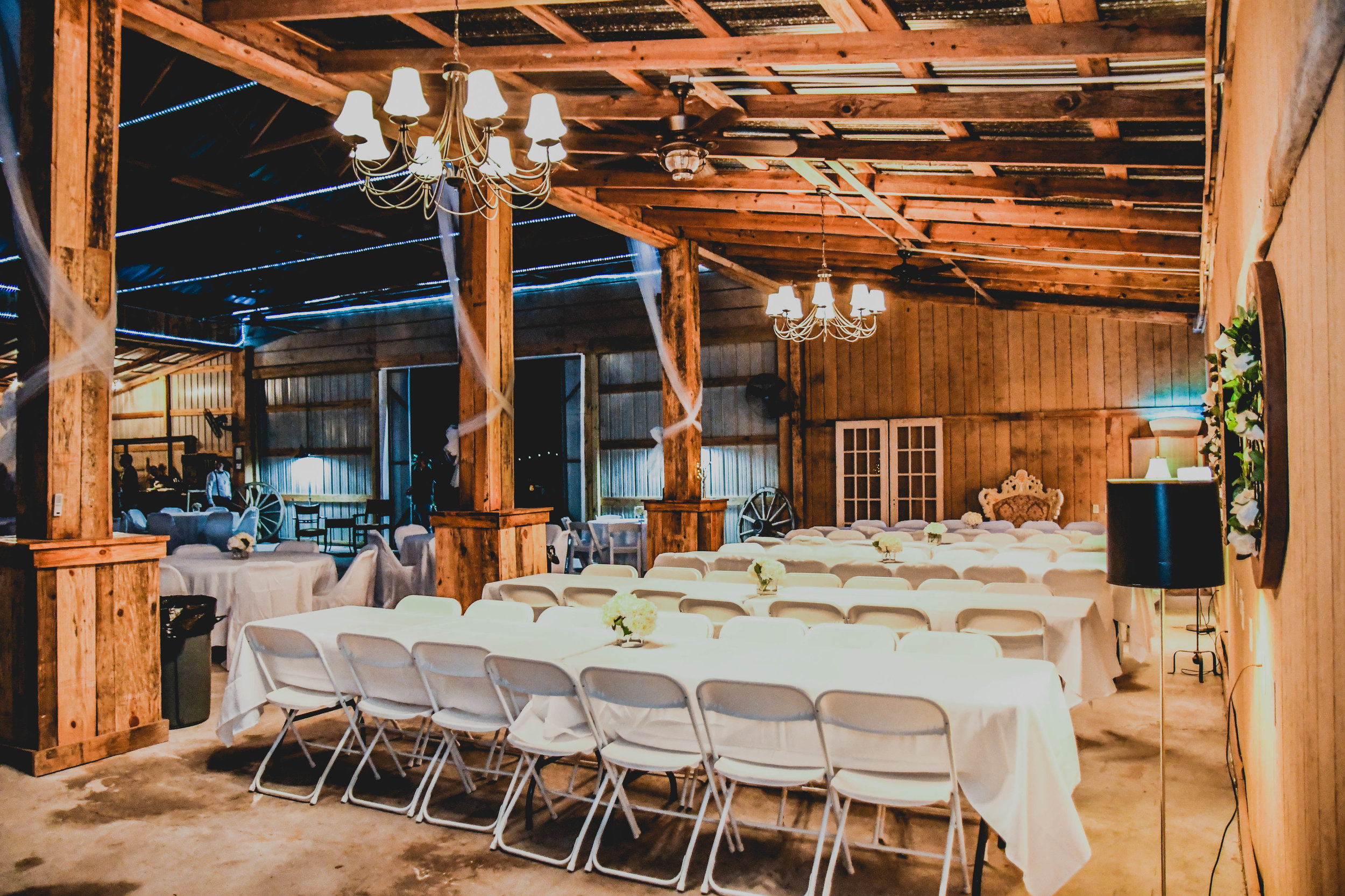 Lucy Belle Farms  |  Statesboro, Ga