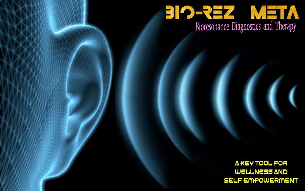BioRezMeta-Software-Banner-Screen.png