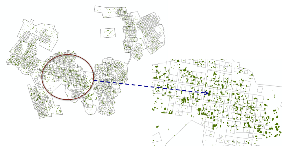 Figure 2 – One of our graduate students, Scot Beck, mapped the tree cover in villages near Wits Rural Facility (the Bushbuckridge Local Municipality), and found that people are planting tree cover that would not otherwise exist in this area.