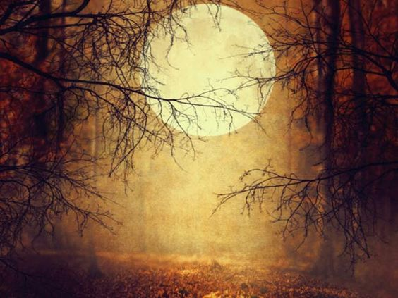 samhain_orig.jpg