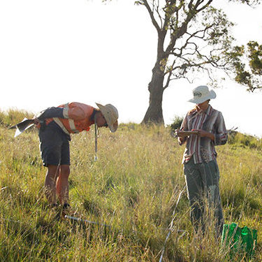 Australian farmers and scientists make a surprise discovery when they team up to fight an invasive weed - ENSIA | SEPTEMBER 07 2017Republished in Scientific American as A healthy hate for lovegrass | October 09 2017