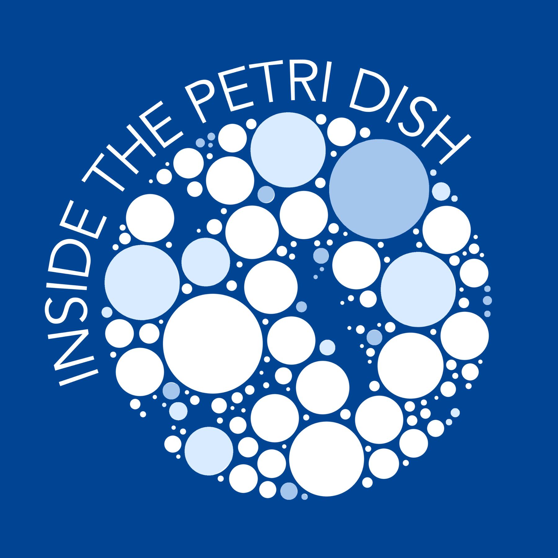 ITUNES-ITPD.png