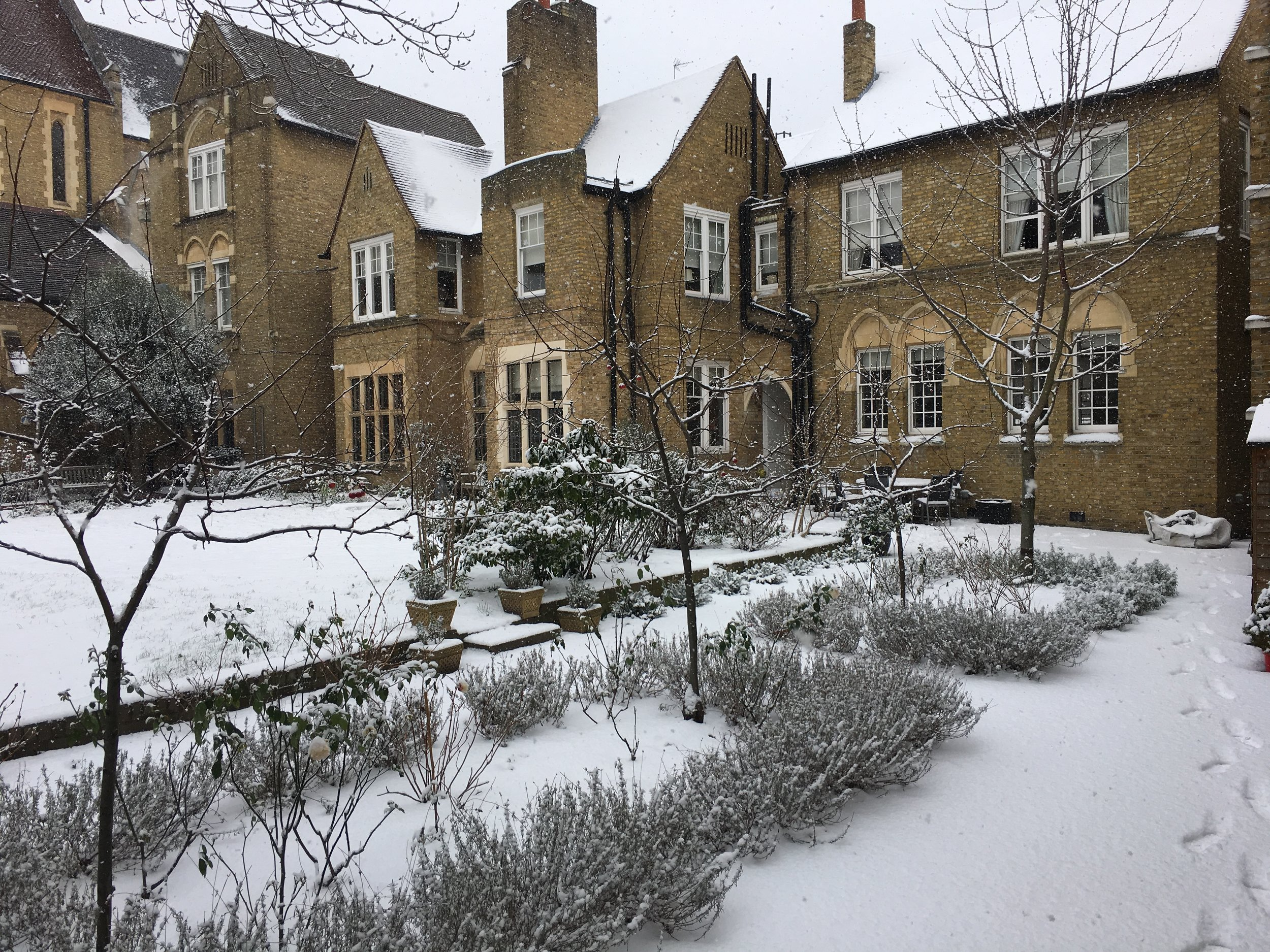 The Rectory Garden in Winter