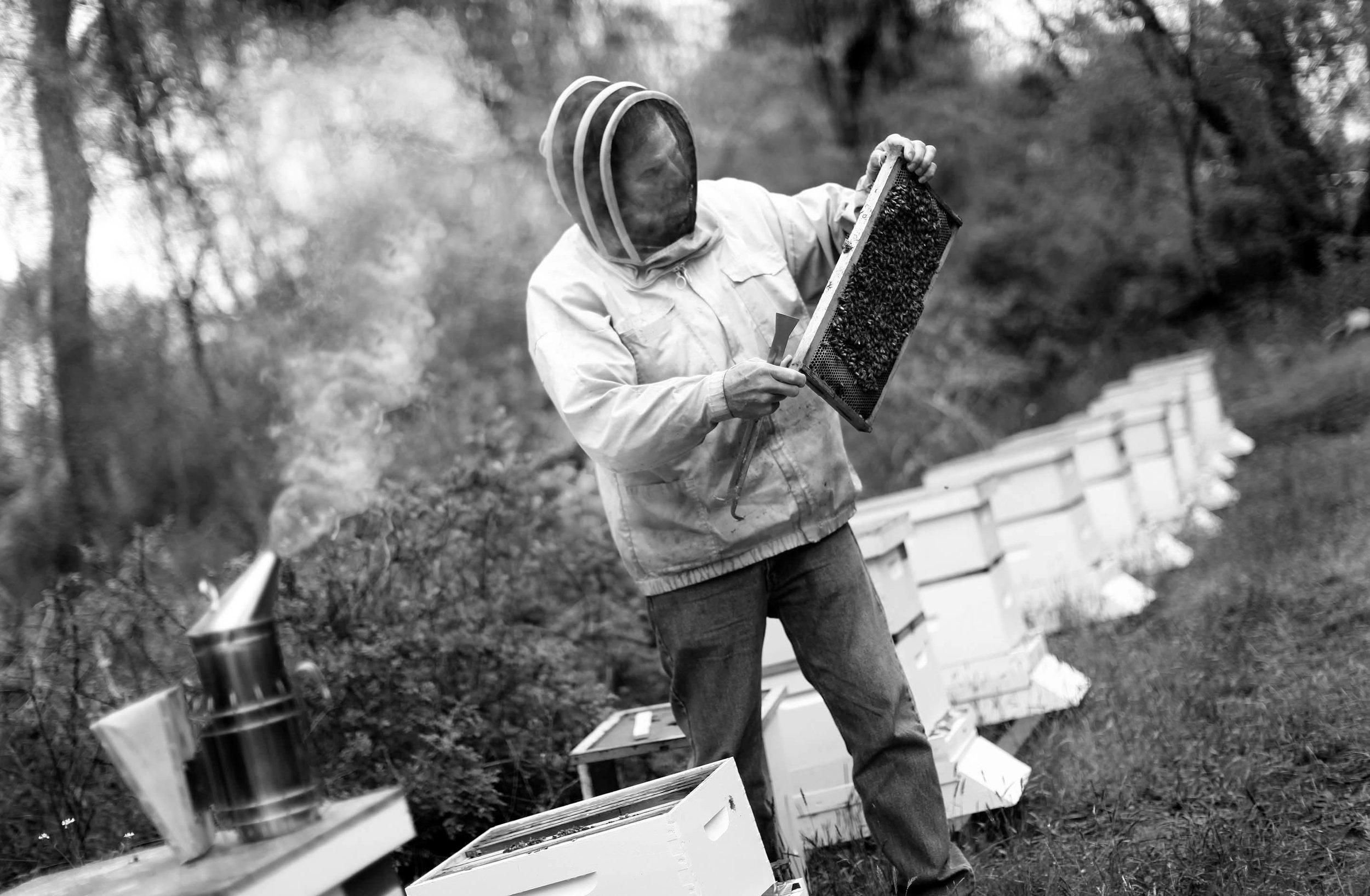 John Carson - Bee Keeper, South Hampton NY