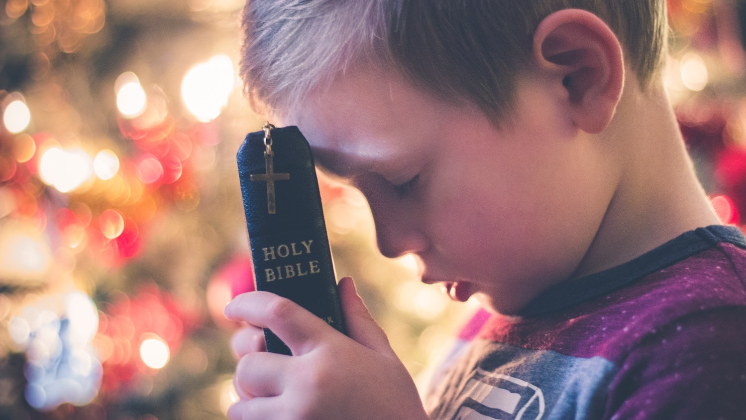 Child holding a Holy Bible and praying