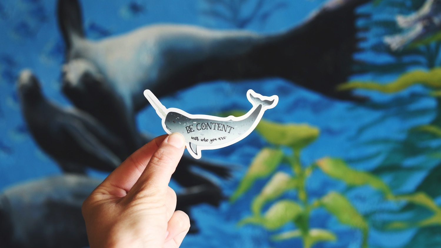 "A hand holding a sticker of a dolphin that says, ""Be Content"""