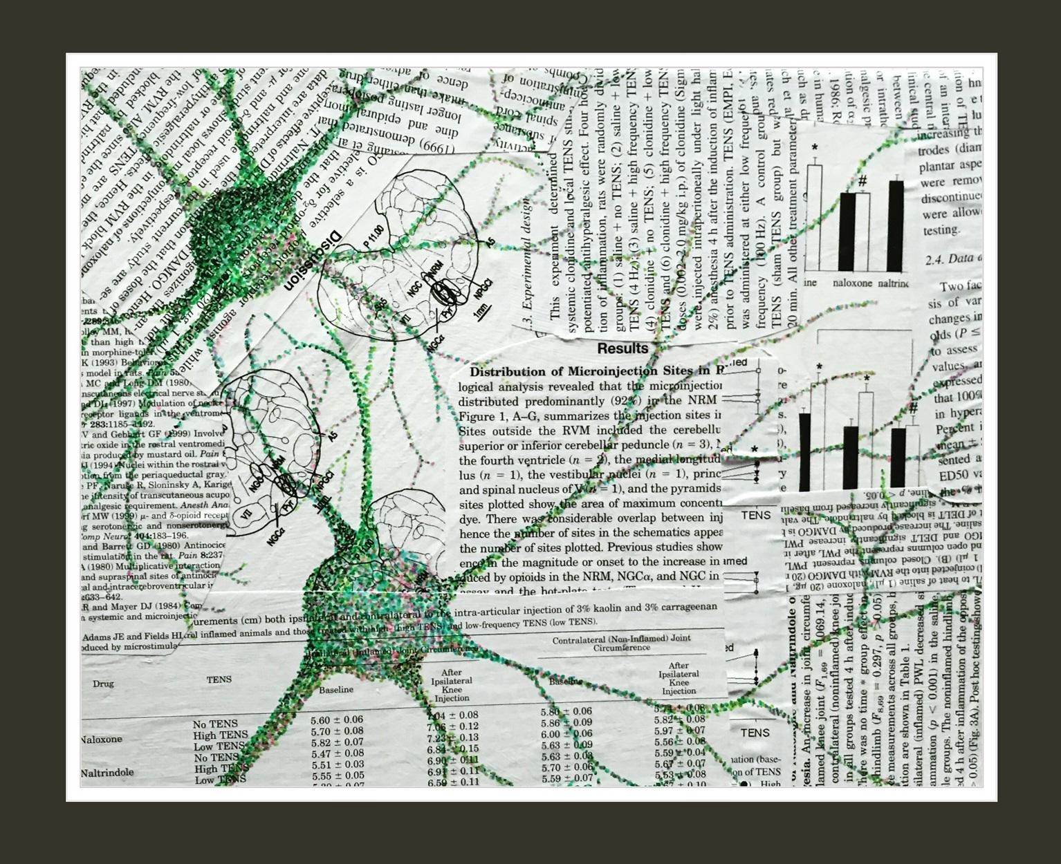 Neuroscience Reprint Art