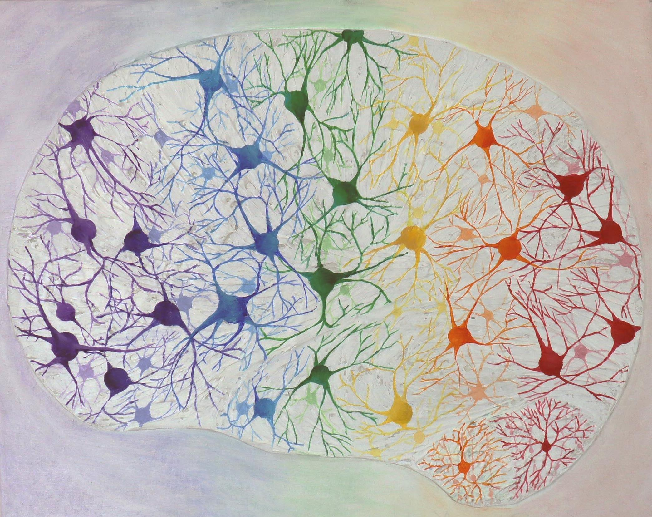 Rainbow Brain