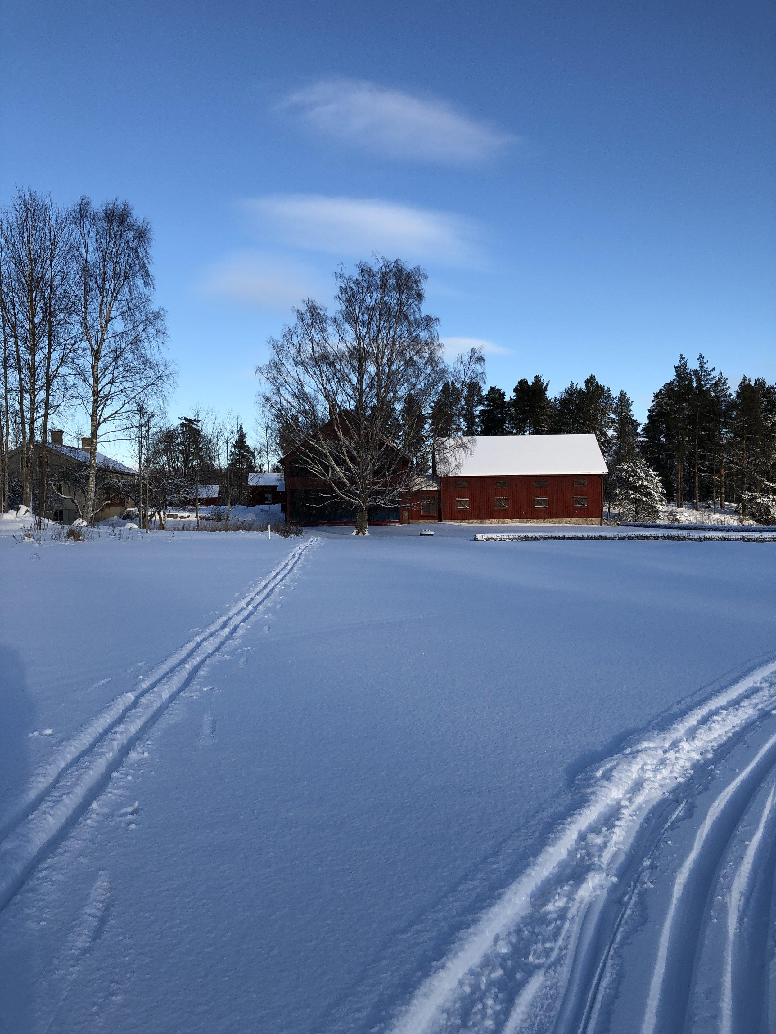 Stenberg_Vinter_skidspår_1_1902_KB.jpg