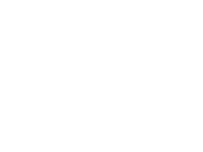 NorthFace_Reverse.png