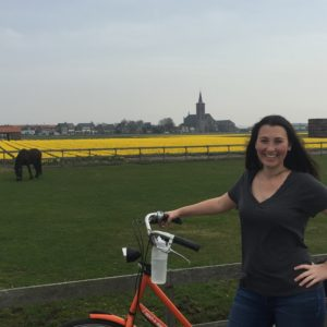 Biking the Tulip Fields Outside Amsterdam