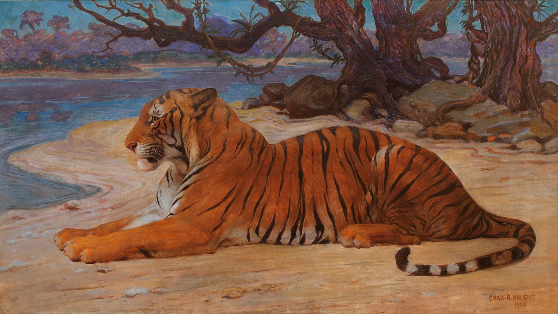 """The Princeton Tiger"" by Charles R. Knight"