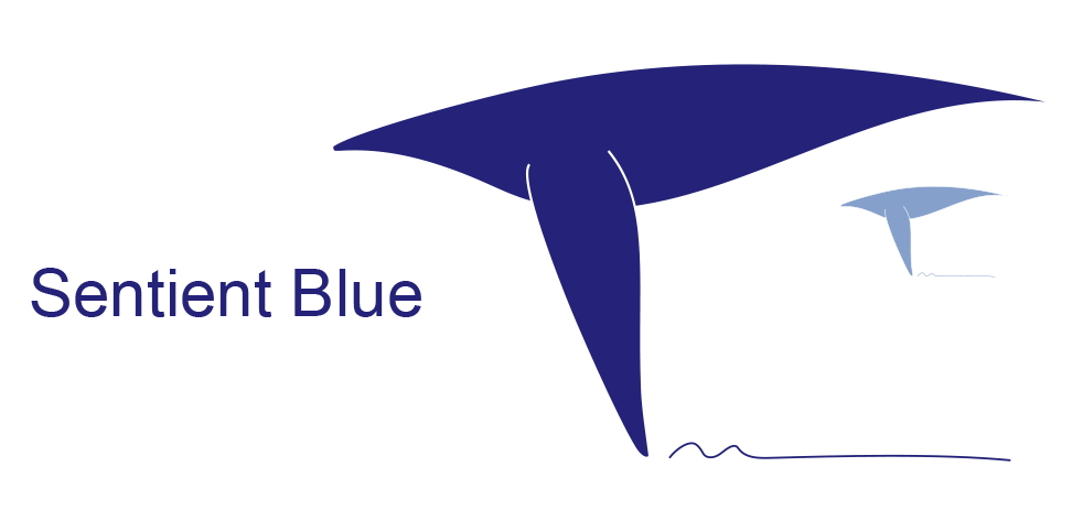 sentient-blue-logo_orig.png