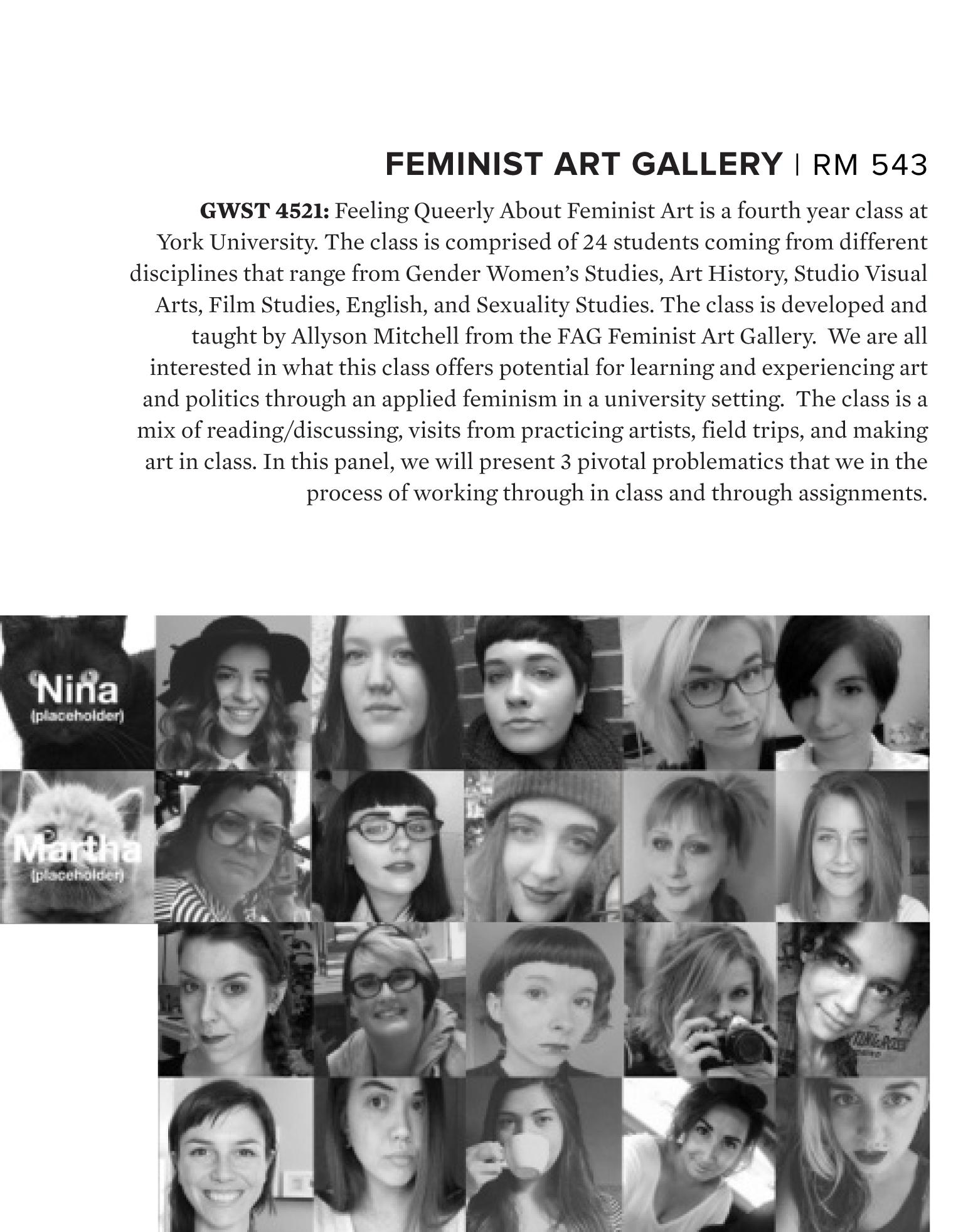 FAC Brochure 2017 pg 12.jpg