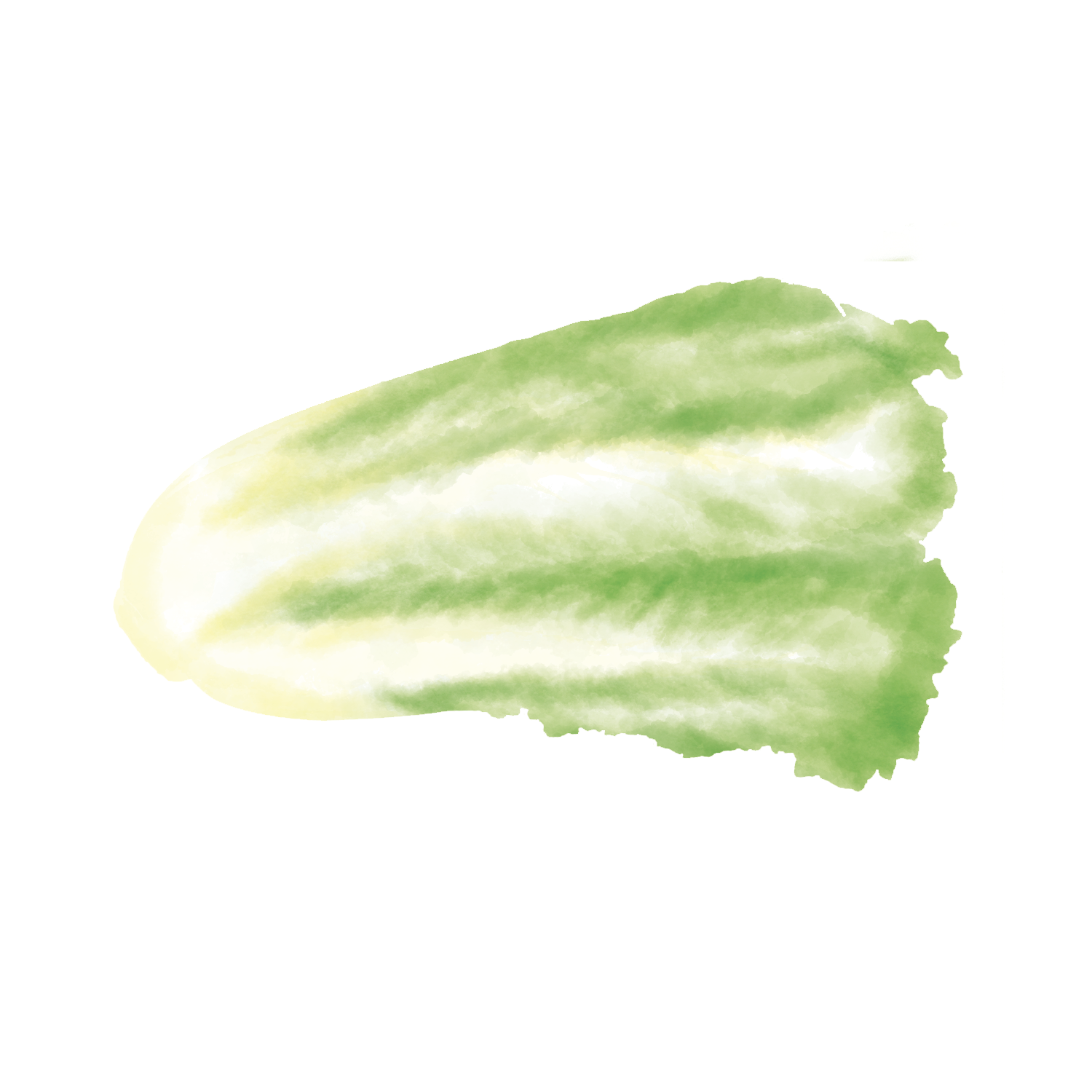PS_Cabbage.png