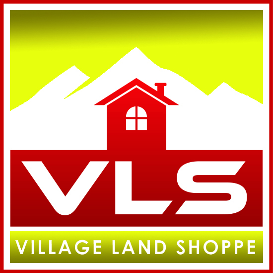 VLS Logo.jpg