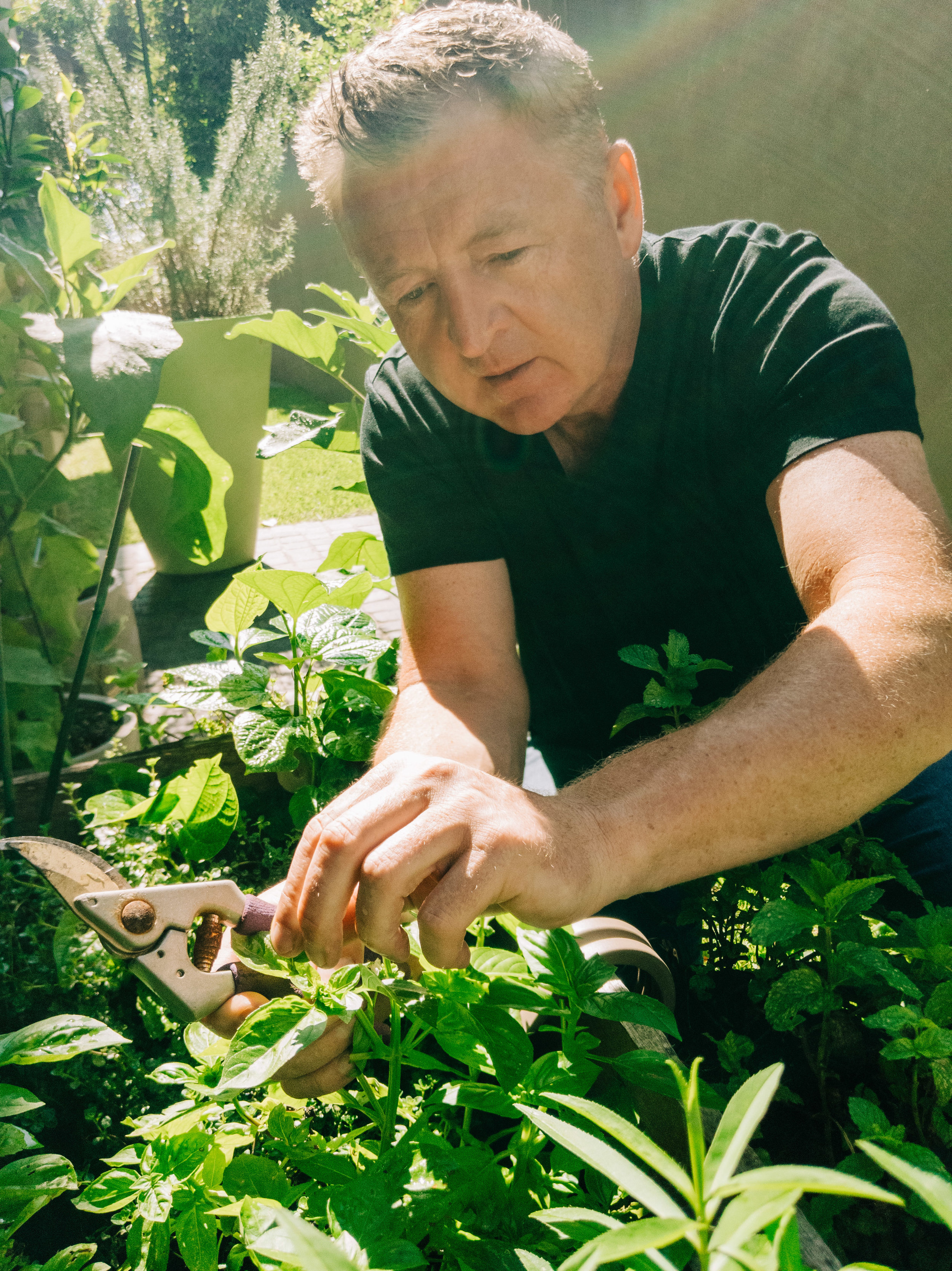 Here I am picking out some of my favourite fresh herbs from my garden at home. I bring these into  Luke's Kitchen  every morning.