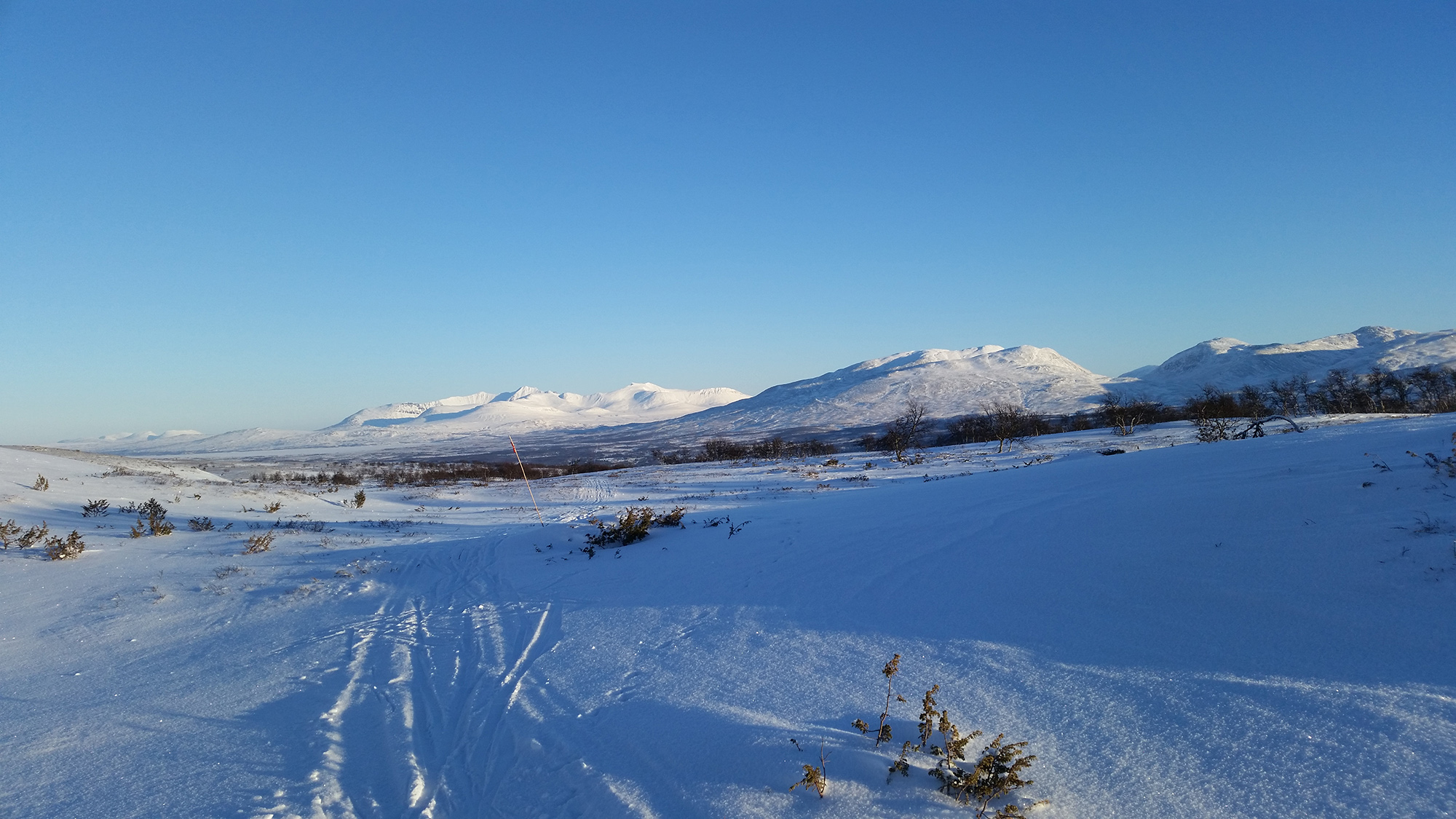 vinter-2.jpg