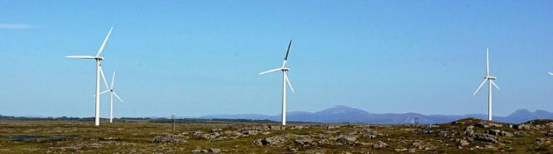 Svartmalte rotorbland på vindturbiner på Smøla reduserte fuglekollisjoner med 70 prosent. Foto Roel May, Nina