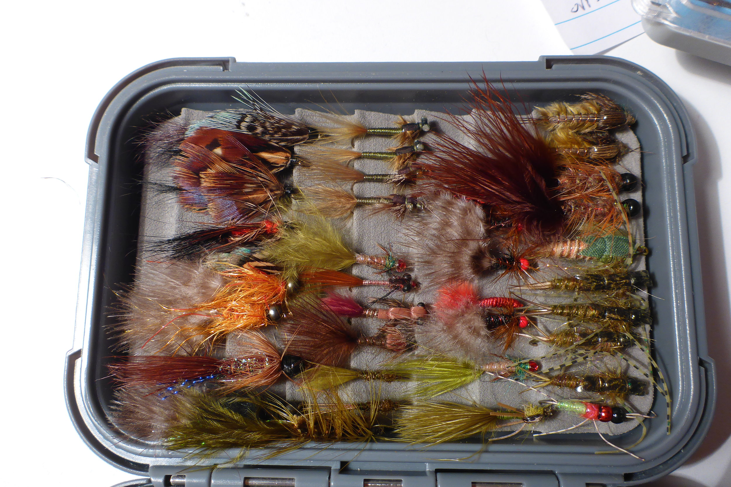 Still water flies - small buggers, damsels etc perfect for around the wee beds.