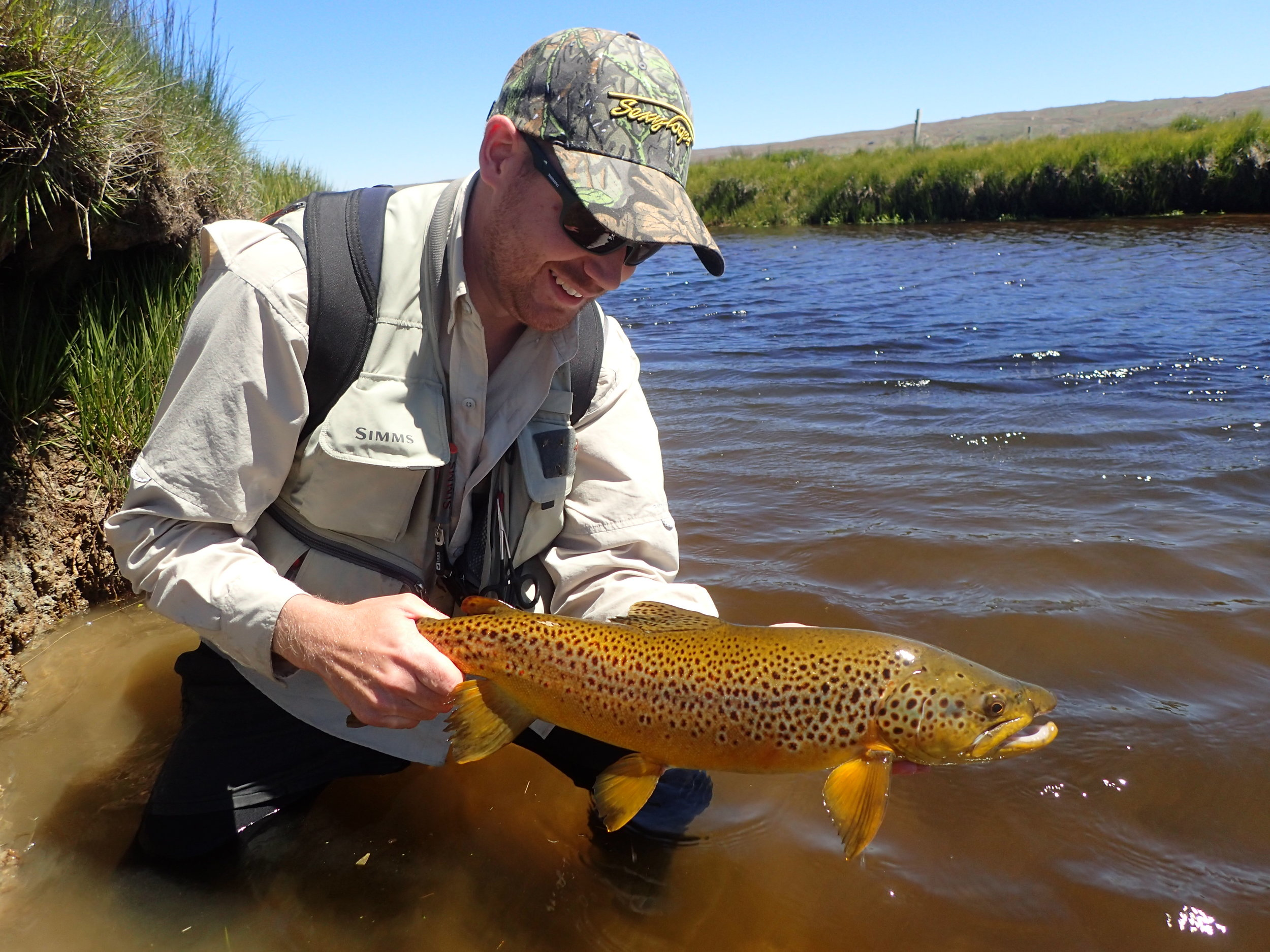 Dry Fly muncher! Again, great colours on this fish
