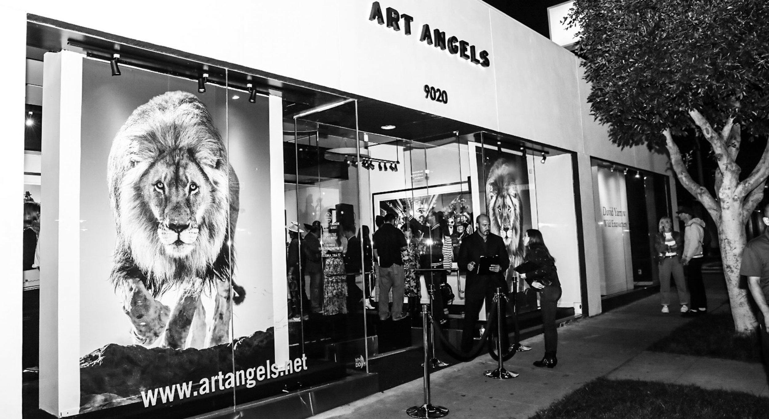 ArtAngels2-0x1470-c-default.jpg