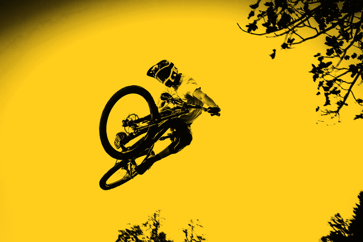 Freestyle_ch_Mountainbike_Jump_black_and_yellow.jpg